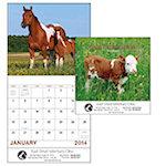 Baby Farm Animals Wall Calendars